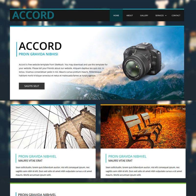 SitePad Theme8